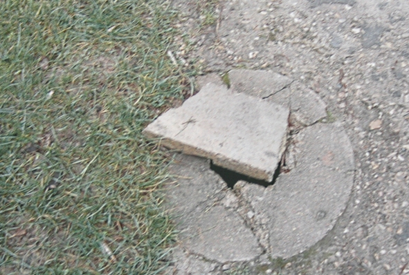 http://nsm07.casimages.com/img/2012/01/13/120113111625390119293930.jpg