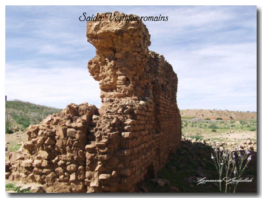 Le site archéologique de Youb (Saida) prochainement restauré!!! 120222080935947039474459