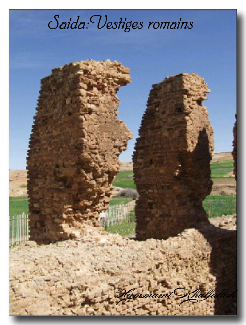 Le site archéologique de Youb (Saida) prochainement restauré!!! 120222080947947039474467