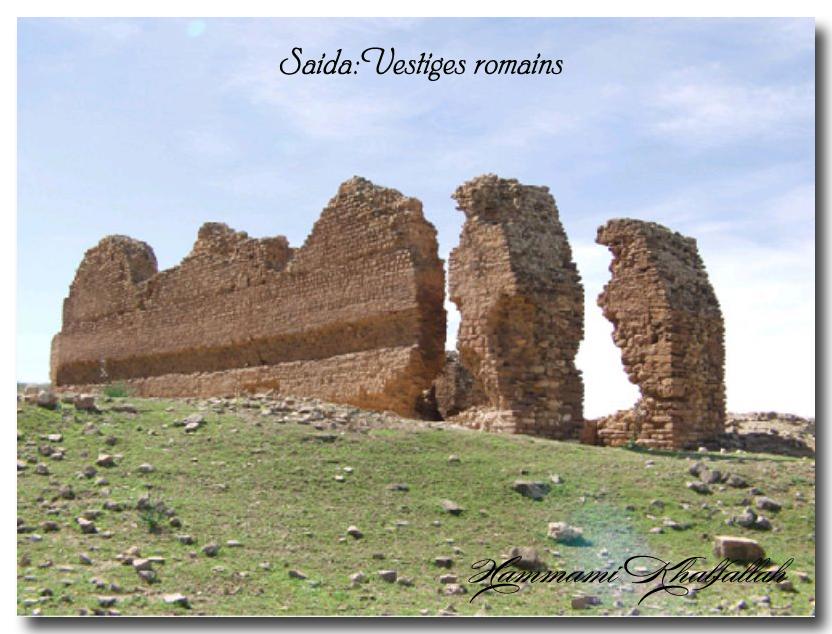 Le site archéologique de Youb (Saida) prochainement restauré!!! 120222081006947039474468