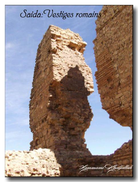 Le site archéologique de Youb (Saida) prochainement restauré!!! 120222081017947039474470