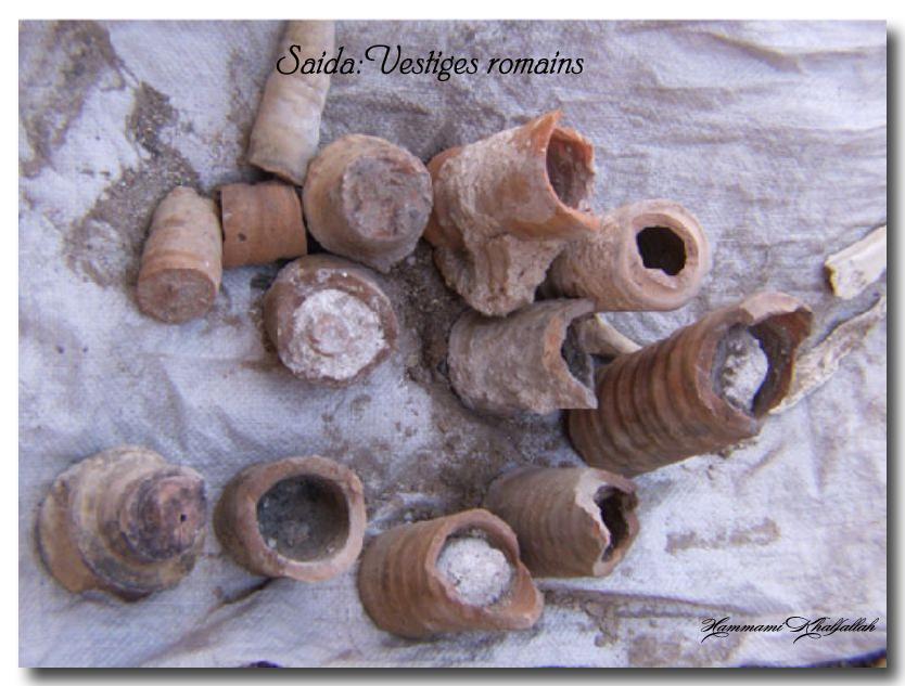 Le site archéologique de Youb (Saida) prochainement restauré!!! 120222081109947039474473