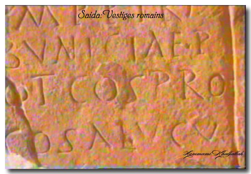 Le site archéologique de Youb (Saida) prochainement restauré!!! 120222081126947039474475