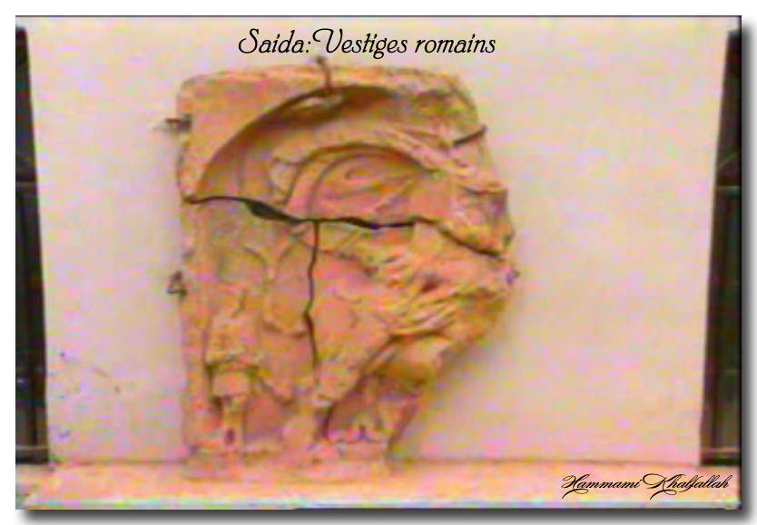 Le site archéologique de Youb (Saida) prochainement restauré!!! 120222081141947039474479
