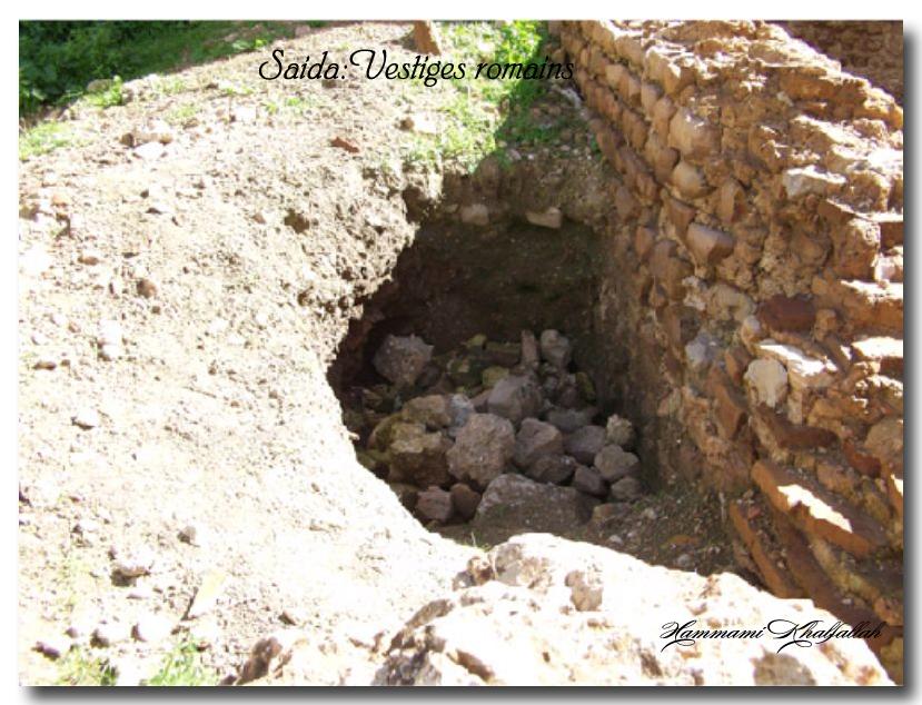 Le site archéologique de Youb (Saida) prochainement restauré!!! 120222081234947039474483
