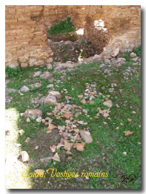 Le site archéologique de Youb (Saida) prochainement restauré!!! 120222081248947039474504