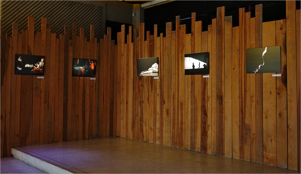 """L'expo """" Les Palissades de Juliobona """" 1702170753396131114853755"""