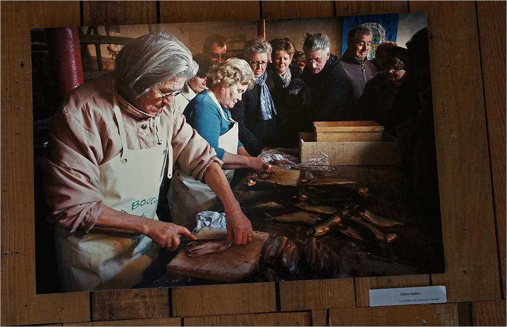 """L'expo """" Les Palissades de Juliobona """" 1702170753596131114853760"""
