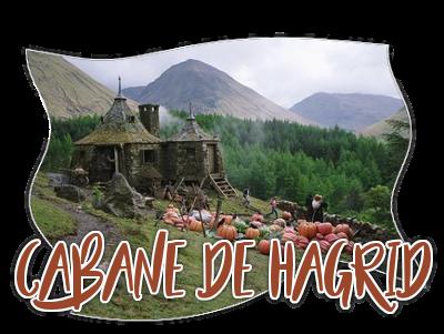 La Cabane du Garde Chasse 17031010383222555414907860
