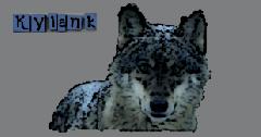 Album Kylank - Image kylank