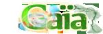 Mésange Orageuse