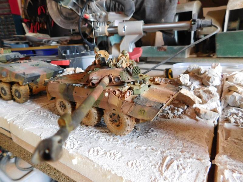 TIGER-AMX10RCR 1705171236076230015046379