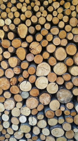 tas de bois