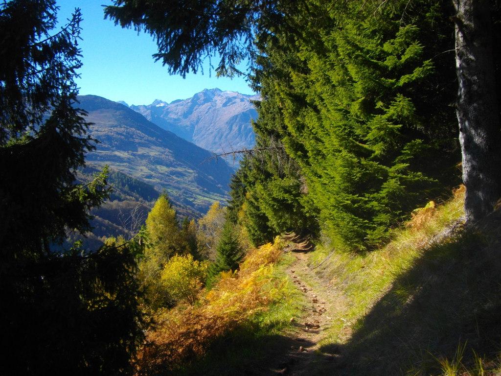 Le superbe sentier pour grimper vers la forêt de Capet :
