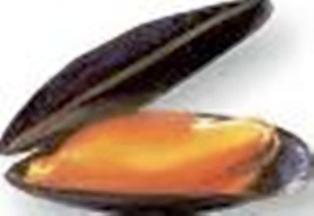 [Le Coin Cuisine] les bulots et autres fruits de mer 17110203543418477115351553