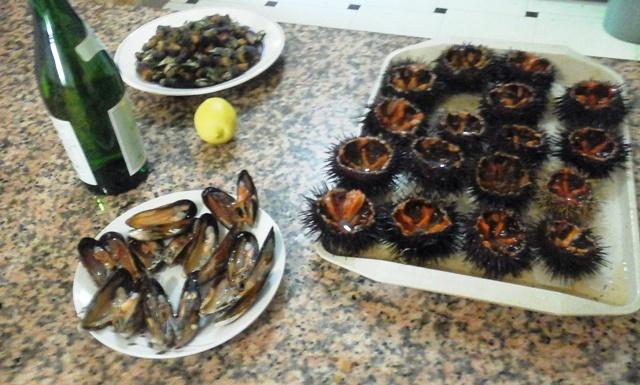 [Le Coin Cuisine] les bulots et autres fruits de mer 17110204004018477115351559