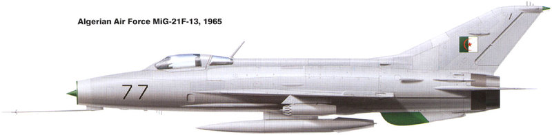 MiG-21 F-13 (Trumpeter 1/48) 17120107161610194415396309