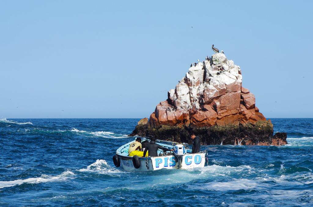 Pérou - De Paracas à Juliaca 17120409254012768015401699