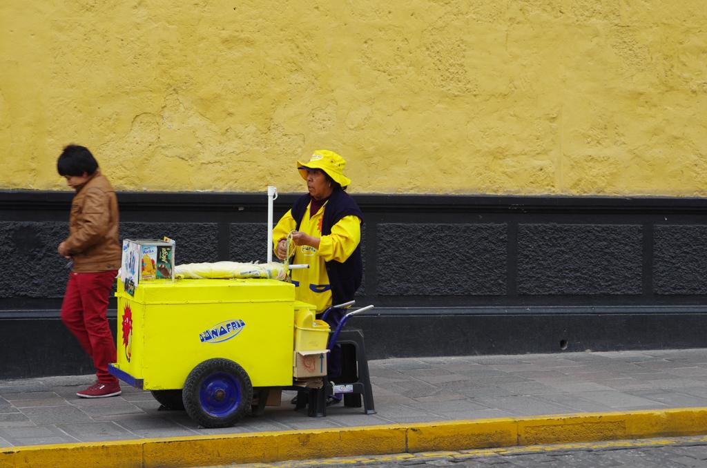Pérou - De Paracas à Juliaca 17120409255612768015401704