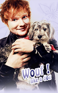 Ed Sheeran Avatars 200x320 pixels   18011307172323571315451268