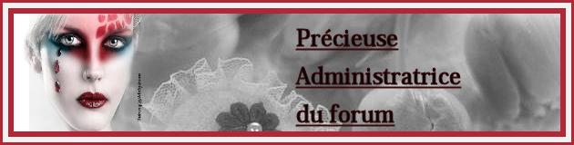 Accessoires drapeaux 1801241211402728615495525