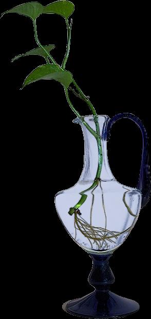 Accessoires de floraux 1801250914072728615502592