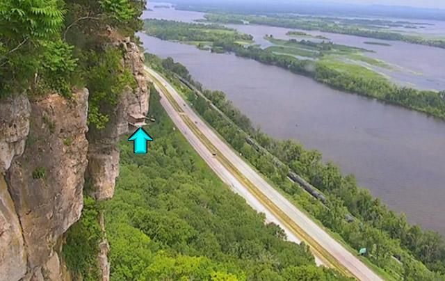 Faucon pèlerin : Minnesota (La Crescent) 1802010451261858215527514