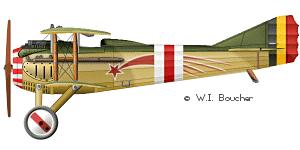 Spad VIIc Aéronautique militaire belge Roden 1/32 18020504165323669015537107